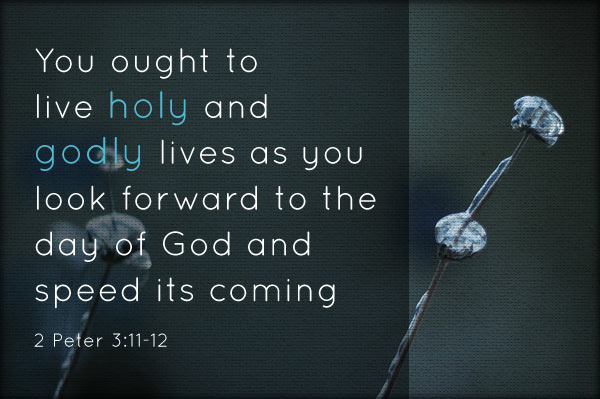 You ought to live holy and godly lives as you look forward to the  day of God and  speed its coming (2 Peter 3:11-12)