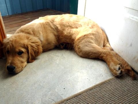 Maggie in the doorway