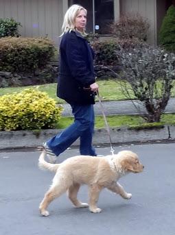 Maggie walking