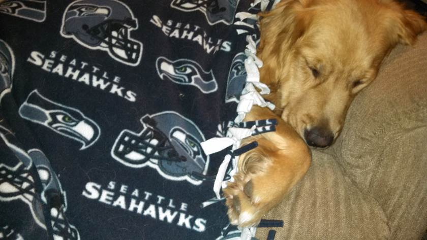 Maggie and her Seahawks blanket